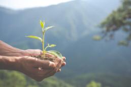 duurzaamheid mon3aan